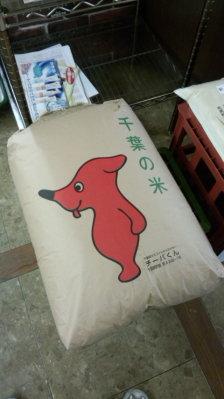 「チーバくん」がお米の袋にも登場しましたね!1