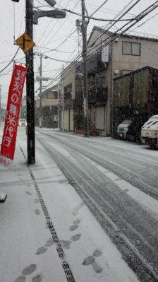 初雪ですね!1