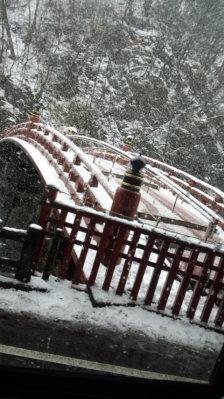 今年の初参りは雪でした1